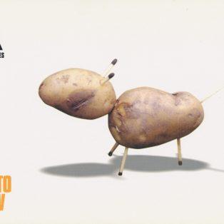 The Dog and Potato Show